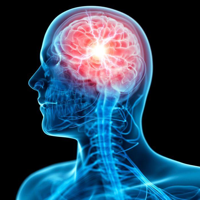 """""""اعرف"""" ما هي وظائف الجهاز العصبي"""
